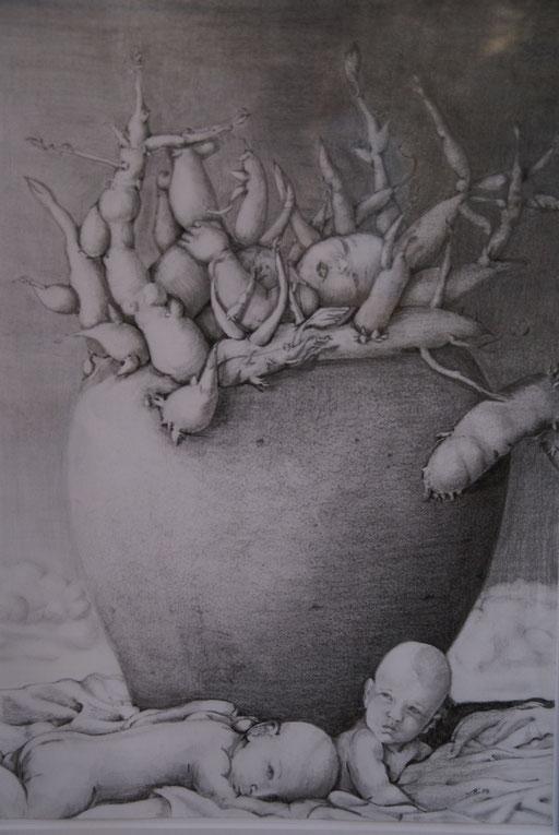 """Bleistiftzeichnung """"Keimlinge""""                                         2004  Privatsammlung"""