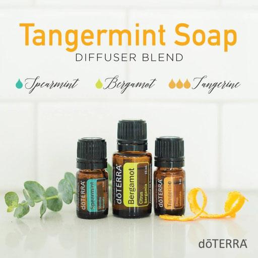 Aroma Welt: doTERRA Bergamot - Bergamotte Ätherisches Öl Diffusermischungen - Diffuser Ideen: Tangermint Soap - Spearmint, Tangerine