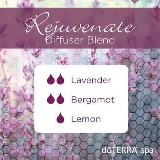 Aroma Welt: doTERRA Bergamot - Bergamotte Ätherisches Öl Diffusermischungen - Diffuser Ideen: Rejuvenate - Lavender & Lemon