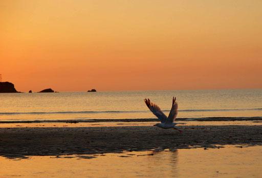 Jersey - Sonnenaufgang