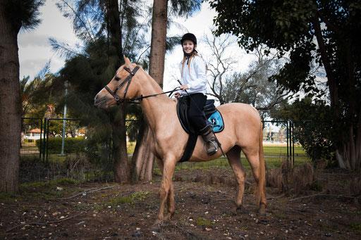 על הסוס