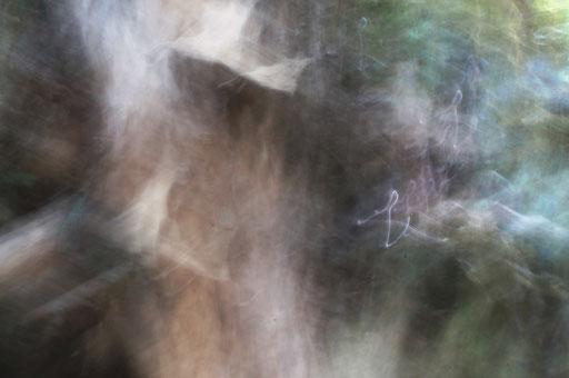 Artère, photographie, tirage Fine art sur Arches museum 315g, 50x75cm, 10 ex.