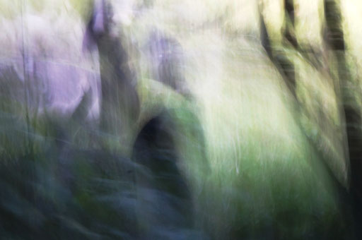 Du cou, photographie, tirage Fine art sur Arches museum 315g, 50x75cm, 10 ex.