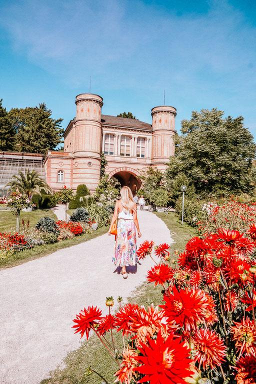 Tipps und Highlight für eure Städtereise nach Karlsruhe - auf meinem Reise Blog zeige ich euch die schönsten Sehenswürdigkeiten, kulturelle Highlights wie das ZKM, die schönsten Gärten, Ausblicke und Ausflüge. Ich stelle euch einen Stadtrundgang für Karls