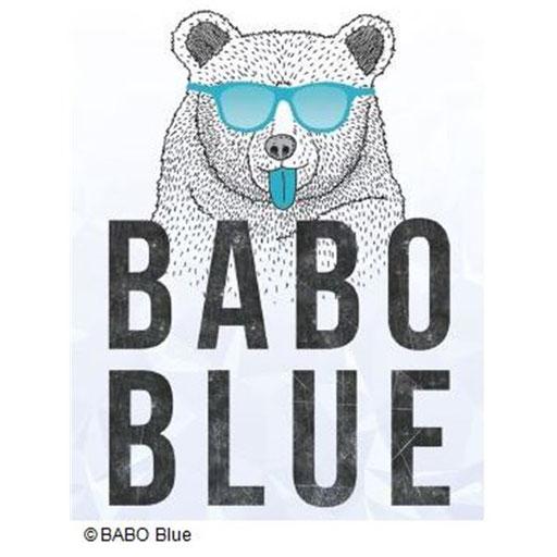 Babo Blue im Test auf Startup Willi