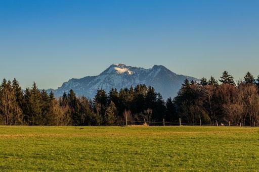 Blick auf die Chiemgauer Alpen