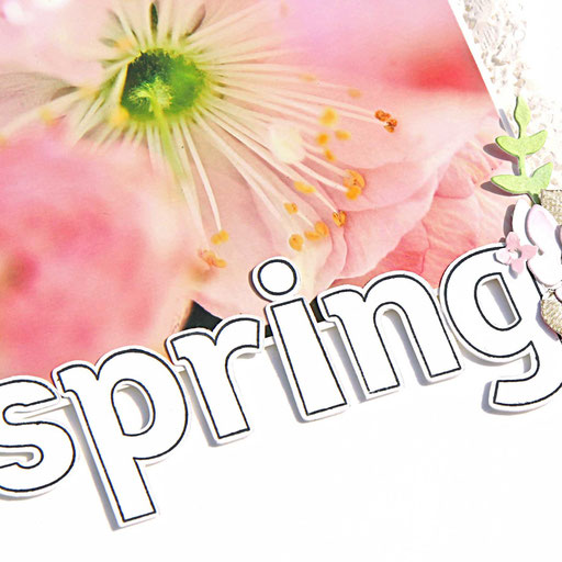 Layout Spring