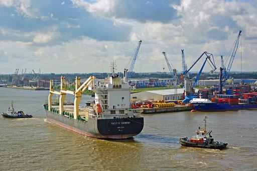 Hamburger Hafen - 139