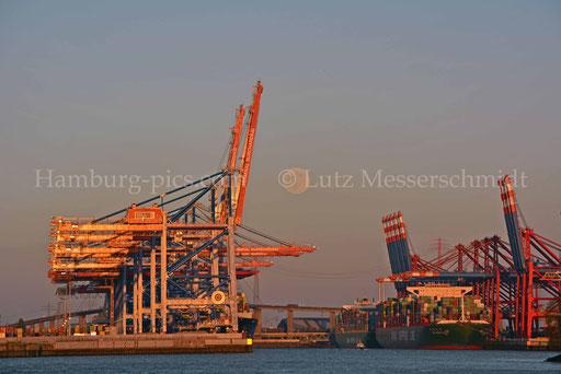 Hamburger Hafen - 26