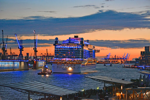 Hamburger Hafen - 156