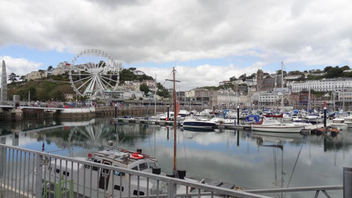 Hafen Torquay