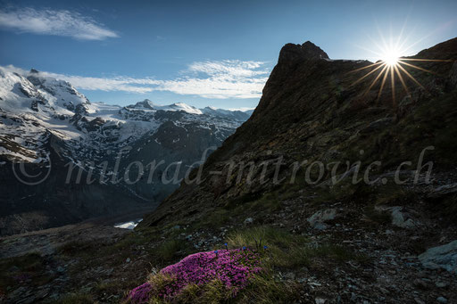 Region Matterhorn