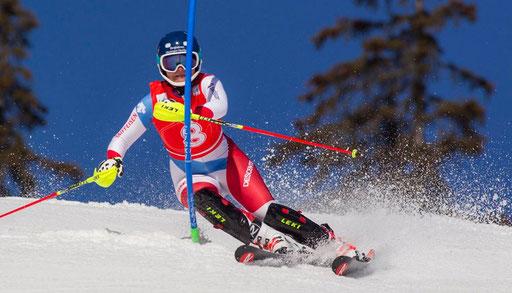 Slalom Bild