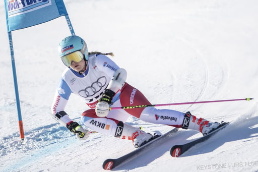 Riesenslalom Action Bild