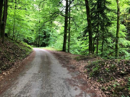 Null Autoverkehr in der Gorge de L'Areuse | (c) Joris Ryf