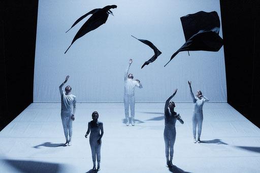 FLAGS - by Paula Rosolen / Haptic Hide, dancers: Douglas Bateman, Léonard Engel, Cindy Hammer, Maria Kobzeva, Stephan Quinci; photo: Jörg Baumann