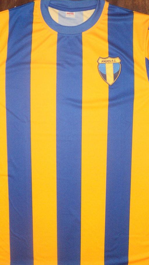Andes Futbol Club - General Alvear - Mendoza