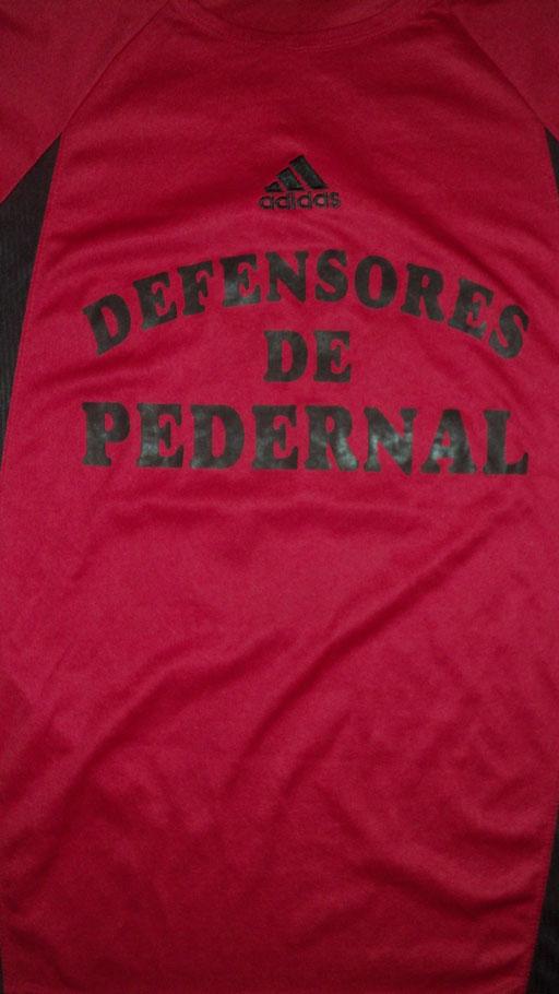 Defensores de Pedernal - Pedernal - Entre Rios.