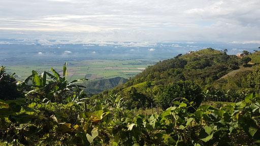 ue sur la vallée de Roldanillo depuis les champs de café de la Finca