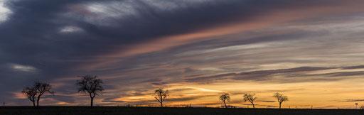 Landstrassen Romantik © martinsieringphotography