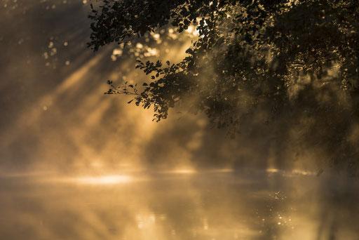Kajaktour vor 6 Uhr morgens im Biosphärenreservat Spreewald © martinsieringphotography