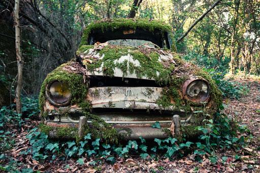zurückgelassenes Autowrack (Frankreich)