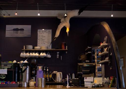 Dans un café...