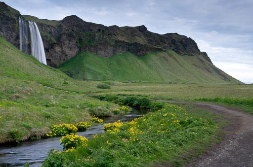 Aux pieds de Seljalandsfoss