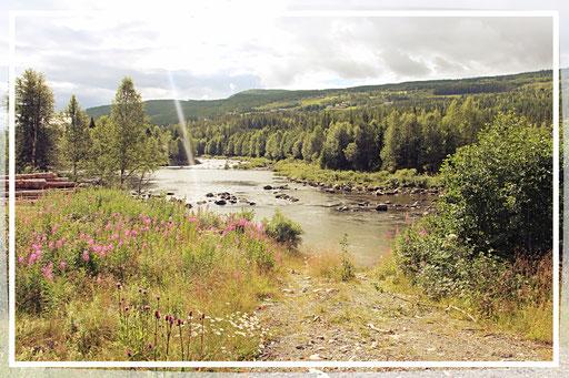 Flüsse ziehen sich durchs Land