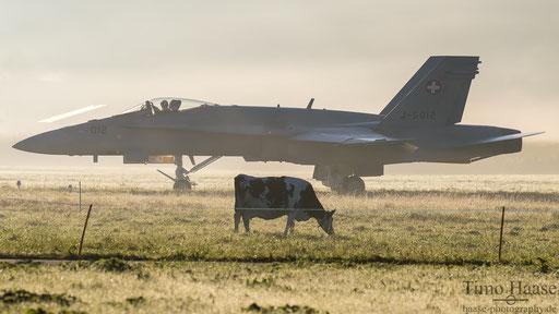 F/A-18 J-5012 zwischen den Kühen