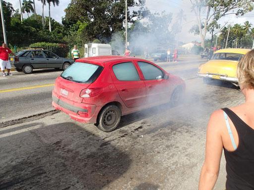 Kein Brand! Insektenbekämpfung in unserem Auto…