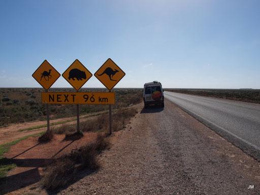 On the road! Vorsicht!