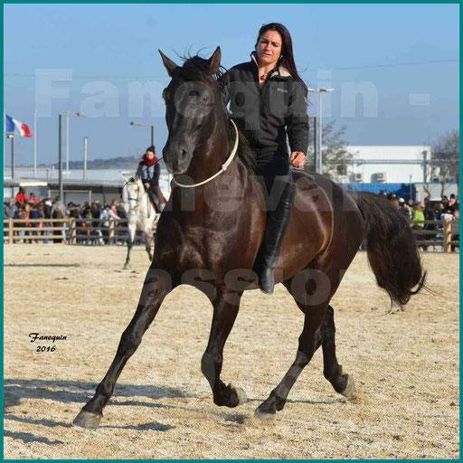Cheval Passion 2016 - Frédérique VIGNE sur cheval Espagnol