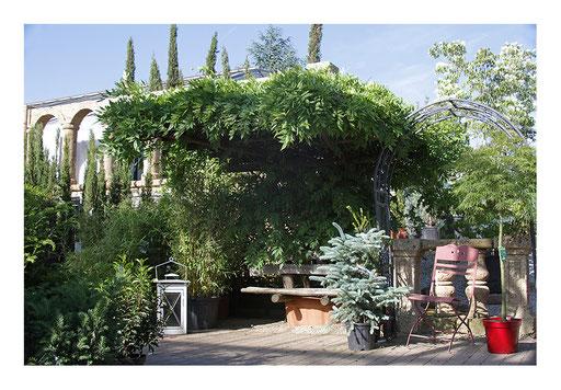 Blumen&Garten #14