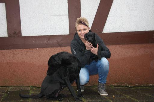Mia zieht zu Sandra nach Herrenberg. Mia wird Obedience machen und vielleicht auch Dummyarbeit.