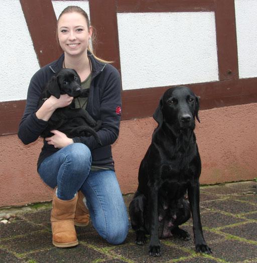 Frieda zieht zu Pia nach Wiesbaden. Frieda wird Dummy- und Jagdhund