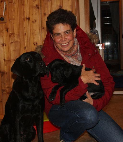 Feena zieht zu Birgit nach Sehnde. Feena wird Dummyhund.