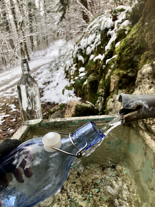 Von dieser Quelle im Wald hole ich das Wasser für die Blütenmischungen.