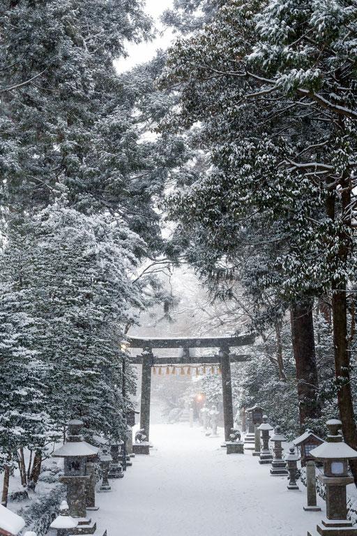 雪深い神社