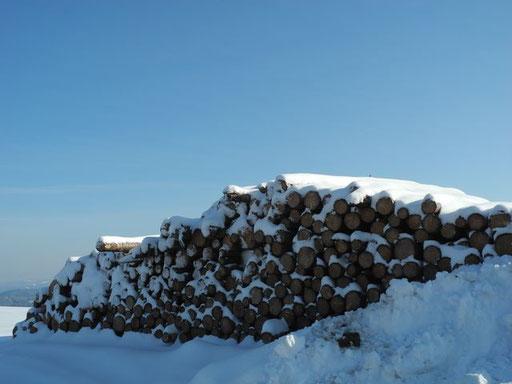Das Holz wartet auf die weitere Verarbeitung