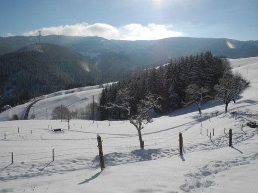 Unsere schöne Landschaft im Winterkleid