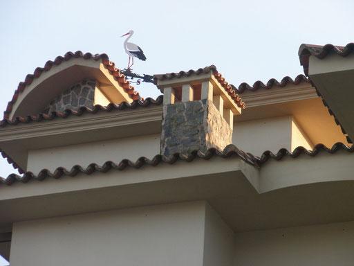 Detalles constructivos exteriores:Formas, cornisas, tejas, piedra, y la veleta-cigüeña dominando el edificio.