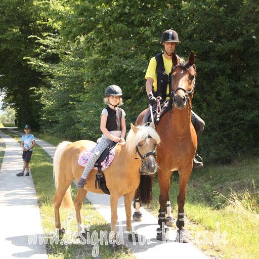 Kundenfoto Kappzaum Welsh A Pony