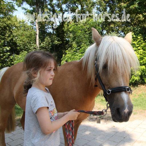 Kundenfoto Kappzaum mit Naseneisen: Welsh A Pony