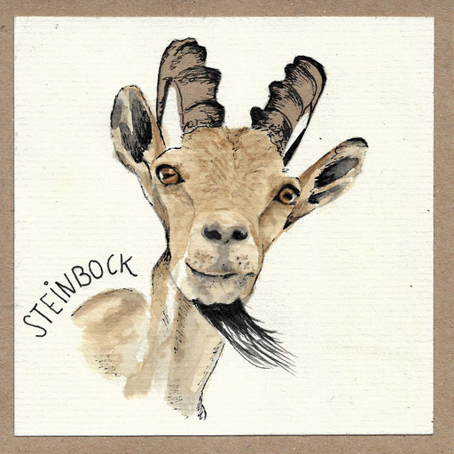 Steinbock, , Aquarell Kunstdruck © Britta Jessen