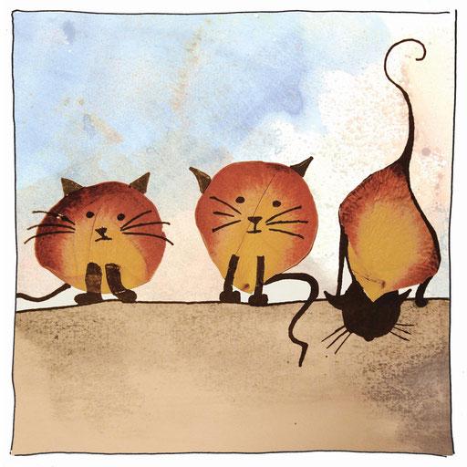 Katzen_Blüte
