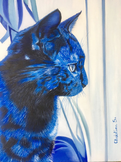 LE BLUES du CHAT 2