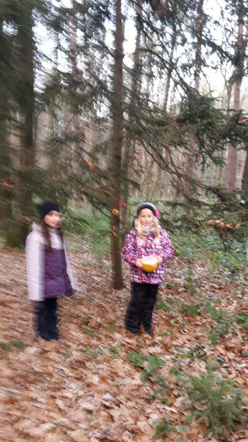 Eulen (Annika und Irina)