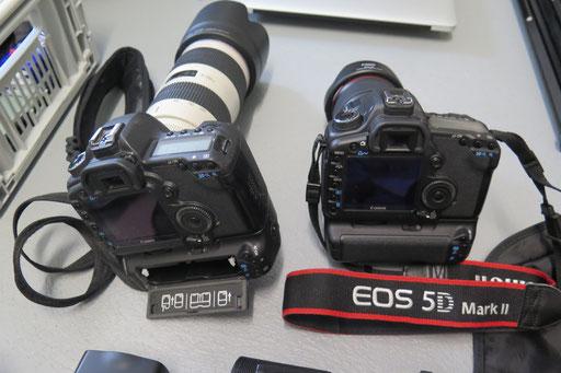 Meine beiden Hauptkameras (Funktionskontrolle, Grundeinstellungen, Zeitabgleich etc.).