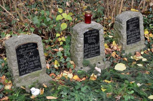 Ostfriedhof Dortmund, Kindergrabmale: Frieda, Willy und Hugo Brandes verstarben in einem Zeitraum von 6 Tagen, im Oktober 1902, im Alter von 2, 4 und 6 Jahren! Nach neueren Informationen, waren es sogar vier Kinder, der vierte Grabstein wurde entwendet.